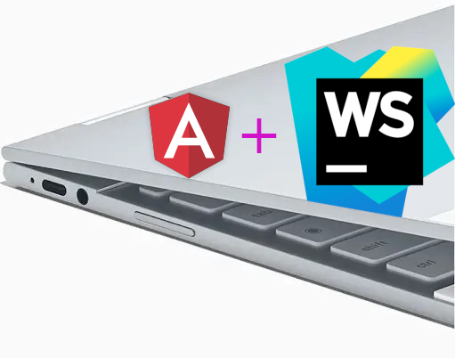 Running WebStorm and Angular on a Pixelbook